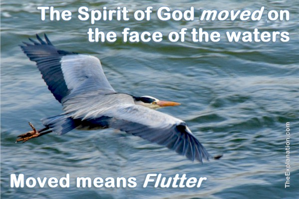 The Spirit of God MOVED on the Face of the Waters. Meaning?