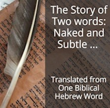The Story of 2 words: Naked and Subtle, Translated from 1 Biblical Hebrew Word