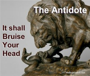 The Antidote. the Lion, representing Jesus Christ, will definitively bruise the head of the Serpent.
