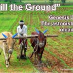 Till the ground. Was that the destiny of Adam and Eve? Learn the amazing significance of this term.
