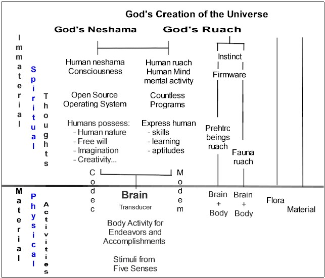 Theory of Everything with the human brain, the immaterial and the material.