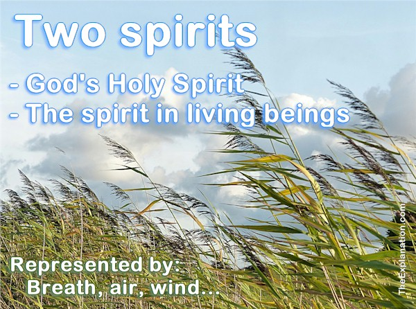 Two spirits. God's Spirit and the spirit in Humans