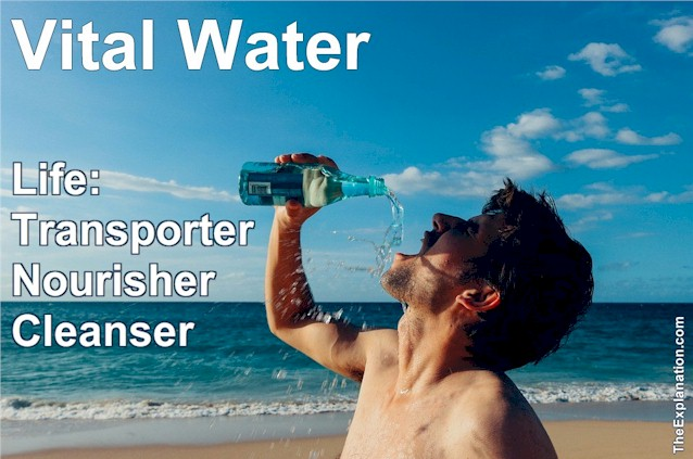 Vital water is responsible for all the transportation, nourishment, and cleansing needs to maintain life on Earth.