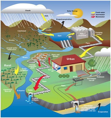 The water cycle adding in the equation of human consumption.