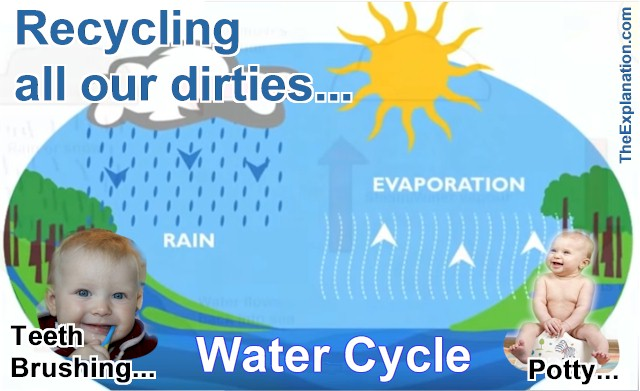 The Water Cycle: Life's activities - brushing our teeth and potty training - changes clean water into used or dirty water and round and round it flows again