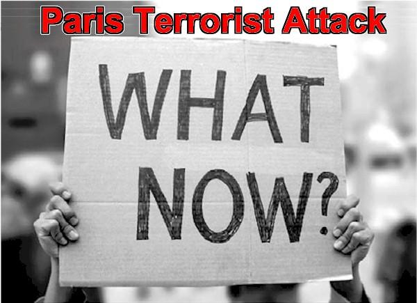 Paris Terrorist Attack, What Now?