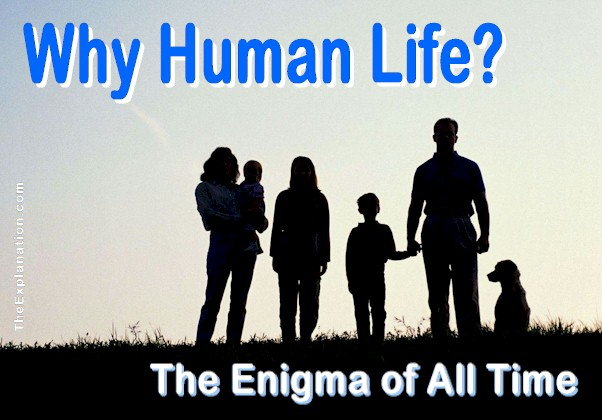 Why Human Life? The No. 1 Unanswered Question of All Time
